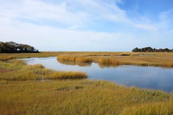 Boat-Meadow-Creek,-Eastham.Reita-Donaldson.Orleans